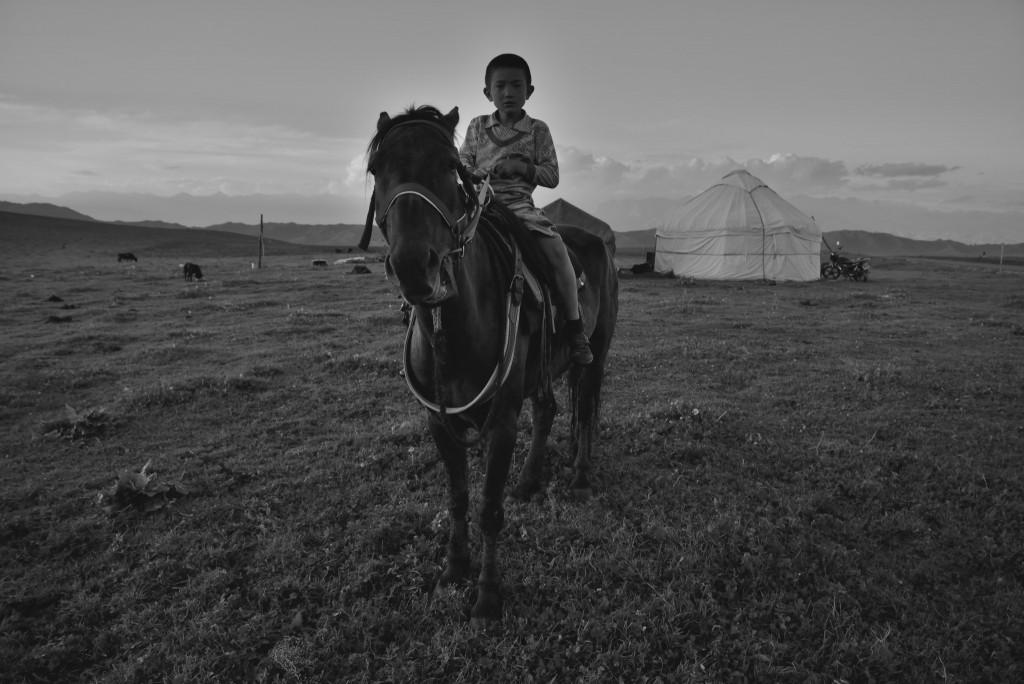 Xinjiang, 2013